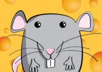 El ratón y sus botones.